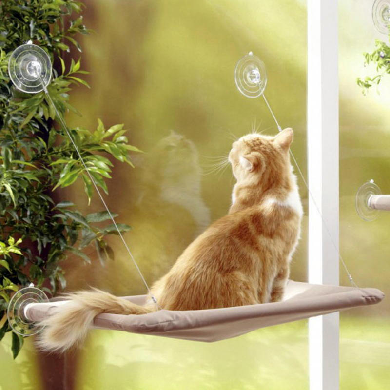 hamac-lit-perchoir-fenêtre-ventouses-chat